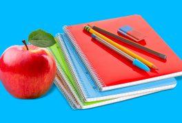 Что купить первокласснику в школу: список 2021 от кэшбэк-сервиса Backit